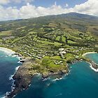 Aerial Along Maui Coast by printscapes