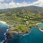Aerial Along Maui Coast by printscapes