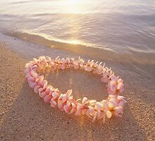 Pink Plumeria Lei on Sandy Beach by printscapes