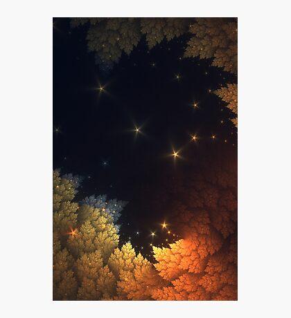 Spangled Sky Photographic Print