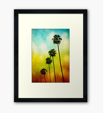 4 Palms Framed Print