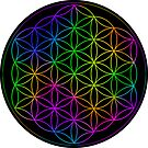 Flower Of Life Rainbow by haymelter