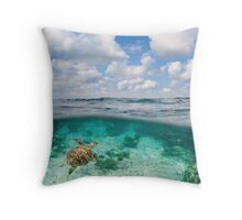 Over Under Shot, Green Sea Turtle Throw Pillow