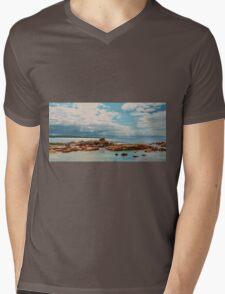 Pelican Perched on Rock Mens V-Neck T-Shirt