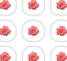 Salmon Pink Rose Sticker