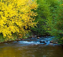 A Touch of Autumn by BGSPhoto