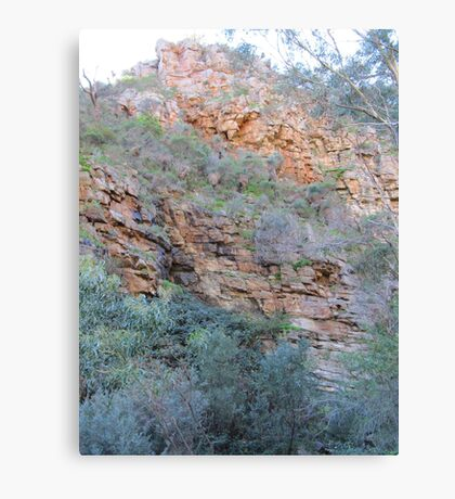 Looking Up! Morialta Gorge, Cons. Park, Adelaide, Sth. Aust. Canvas Print