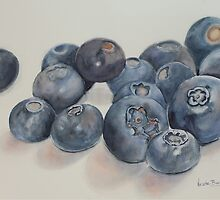 Blueberries by Nicole Barros