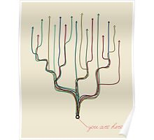 decision tree -  you are here Poster