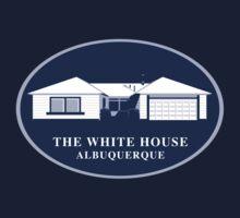 The White House by Dann Matthews