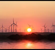 Sunset and windmills  by Kimberly Palmer