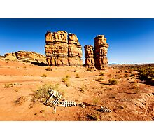 Capitol Reef National Park with Skeleton Photographic Print