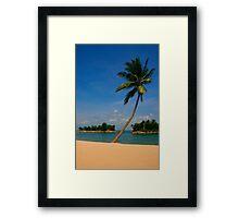 Tropical Palm on the Beach Framed Print
