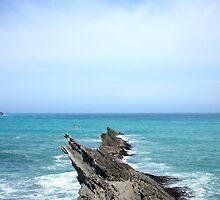 Rocks at Cape Palliser, New Zealand by jezkemp