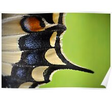 Swallowtail Wing Poster