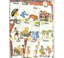 See Dick & Jane's Crazy Quilt.. Photographic Print