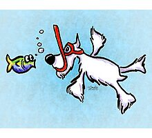 White Schnauzer Under the Sea Photographic Print