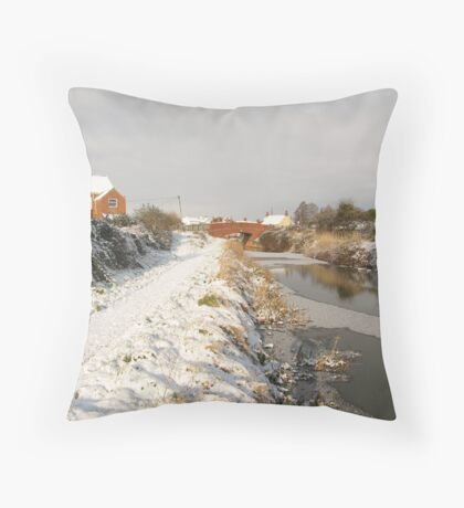 Bridgwater and Taunton Canal - winter scene. Throw Pillow