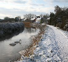 Bridgwater and Taunton Canal - winter scene #2. by Antony R James