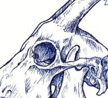 Petal Haloed Skull Sticker