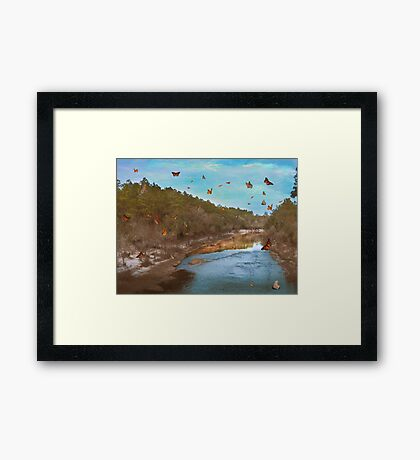 Summer at the River Framed Print