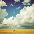 Into the Great Wide Open by emado