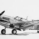 P-40 Warhawk, (Kittyhawk, Kitty bomber, Tomahawk) by Dave Black