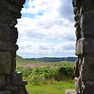 Skelton Tower lookout by apple88