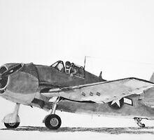 Grumman F6F Hellcat  by Dave Black