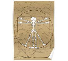 Vitruvian Man Skeleton Cartoon  Poster