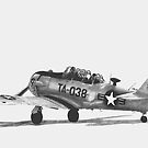 North American AT-6 Texan by Dave Black