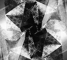 Prismatic Vision - Black and White by SRowe Art