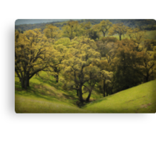 To Comfort You Canvas Print