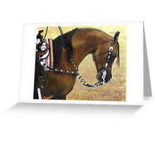 Arabian Western Pleasure Horse Portrait Greeting Card