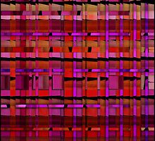 Midsummer night's tartan by rita vita finzi