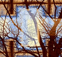 Harmonious Colors - Blue White Brown by SRowe Art