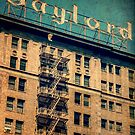 1924 Gaylord Apartments Vintage Neon Sign by Honey Malek