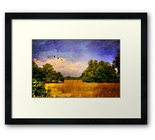 Summer Country Landscape Framed Print
