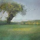 Tree in the Cornfield by Eileen McVey