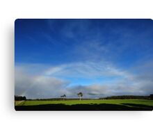 nearly rainbow Canvas Print