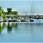 Bay City Marina by Bill Noonan