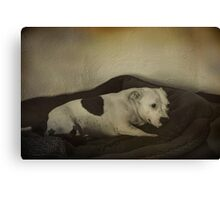 Ruby's Bed Time Canvas Print