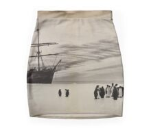 Nimrod and the Penguins Mini Skirt
