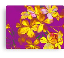 Colours Flowers Canvas Print