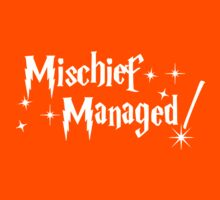 Harry Potter Managed Harry, Mischief Managed Kids Tee