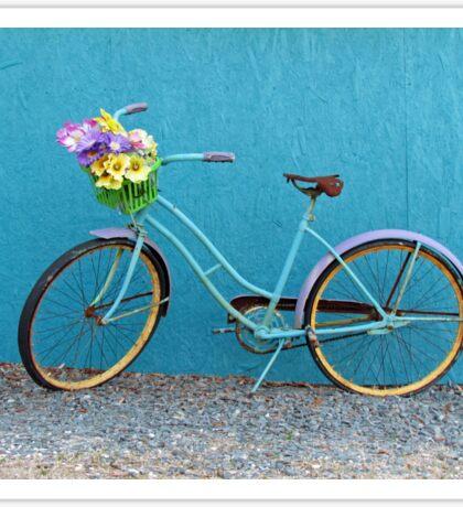 Antique Bicycle Sticker