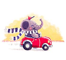 Car Trip - Rondy the Elephant driving his car Photographic Print