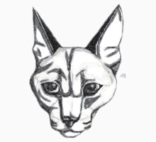 Caracal Cat by WildCatArtist