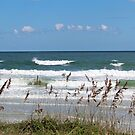 Breaking Waves by Cynthia48
