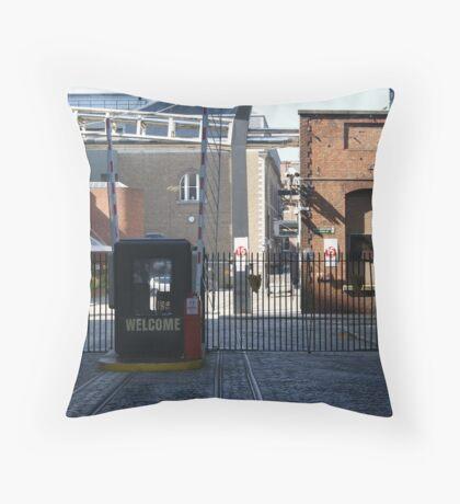 Ironic Ireland? Throw Pillow